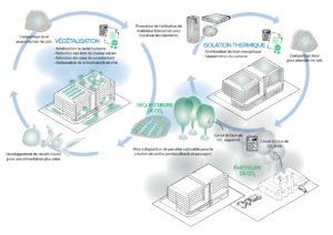 Instauration de bio-économies circulaires